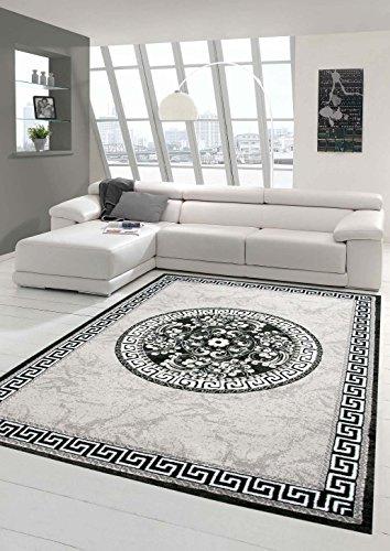 Traum Moderner Teppich Designer Teppich Orientteppich mit Glitzergarn Wohnzimmer Teppich mit Bordüre und Kreismuster in Grau Anthrazit Creme Größe 80x150 cm