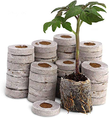 FDCAI Anzuchterde,Kokos Quelltabletten Mit Nährstoffen, Komprimierte Peat Pellet Faserboden Pflanzensammen Starters, Saatgutdünger Nährstoffblock Komprimierter Torfblock (50pcs)