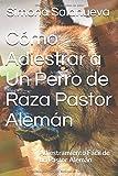 Cómo Adiestrar a Un Perro de Raza Pastor Alemán: Adiestramiento Fácil de un Pastor Alemán