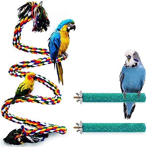 Best Bird Perches for Parrots