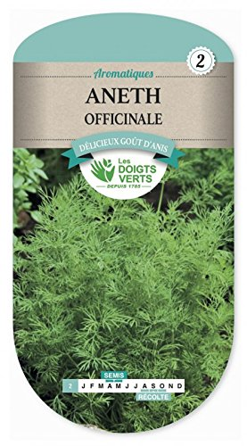 Les doigts verts Semence Aneth Officinale