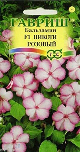 FERRY Hohe Wachstum Seeds Nicht NUR Pflanzen: Samen Balsamine Hybrid Waller Picota Rosa 5 Samt ????????? Jährliches Blumen S0291