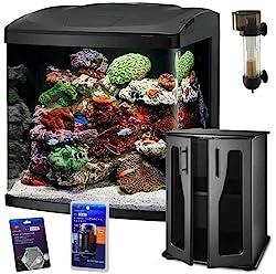 Saltwater aquarium for beginners ultimate guide for Saltwater fish tanks for beginners