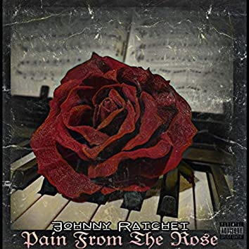 Pain from the Rose
