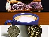 Cannabis Frozen Yogurt Sandwiches, Canna Espresso Macchiato, 10g Big Boy Mega Blunt