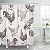 Emvency Fabric Shower Curtain Curtains with Hooks Chicken Cocks and Hens Sketch Rooster Farm Hand Animal Drawn Cockerel 60'X72' Waterproof Decorative Bathroom