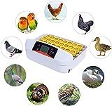 Hisunny Incubadoras de Huevos de Gallina Automtica Control De Temperatura Incubadora Manual Material de PVC para Huevos del Pato, Huevos de Pavo 32 Huevos
