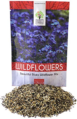 All Blues Wildflower Seeds - Bulk 1/4 Pound Bag - Over 30,000 Pure Live Seeds!