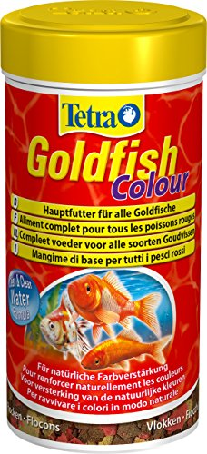 TETRA Goldfish Colour - Aliment Complet en flocons pour Poisson Rouge - 250ml