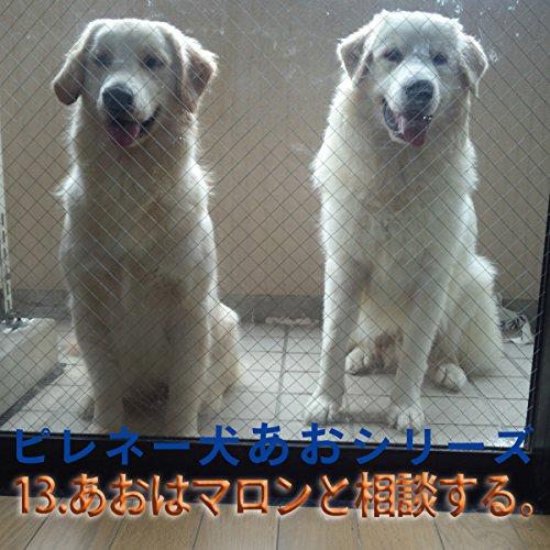 『ピレネー犬あおシリーズ 13.マロンと相談する。』のカバーアート