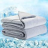Elegear 2in1 Kühldecke Sommerdecke Kuscheldecke - Arc-Chill Duales Design Selbstkühlende Decke für Besseren Schlaf Kühlenden Decke für Erwachsene & Kinder Baumwolle Weiche Wohndecke 220 x 200 cm