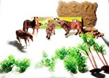 Great gift for Kids to learn about Farm Animals and their Habitat Includes Farm Animals, Base Plates, Grass (Total 21 pcs) Non-Toxic and great for learning Great display piece for any kids play room