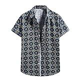ZAIZAI Camisa de manga corta floja hawaiana camisa de manga corta camisa casual hombre verano vintage étnico ropa de playa (Color : Blue, Size : L code)