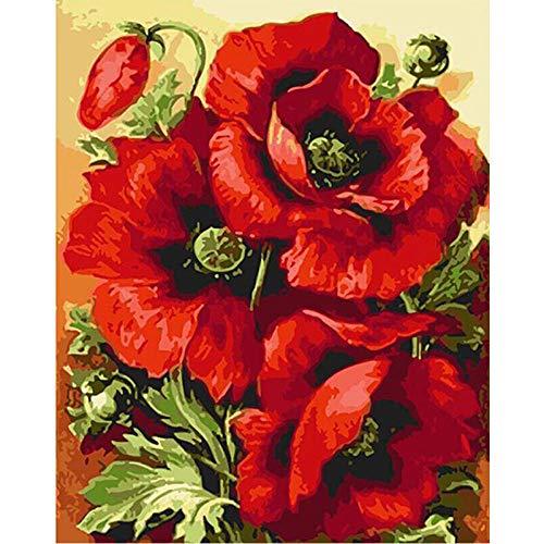 Zhonchng doe-het-zelf voorbedrukte canvas-olieverfschilderij geschenk voor volwassenen kinderen schilderen op nummer-kits huis decoratie -rode bloem 40 * 50 cm met frame