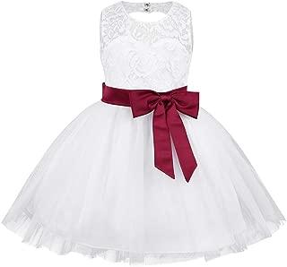 inlzdz Flower Baby Girl Dress Sleeveless Lace Heart Cutout Back Baptism Christening Tutu Dress Up