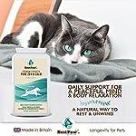 Best Paw Nutrition - Naturel calmant pour Les Chiens - Favorise Le comportement Calme - Aide Les Animaux domestiques à gérer Le Stress dans différentes Situations #1