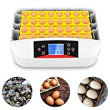 Incubadora de huevos con un controlador de temperatura automático e...