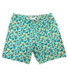 Bluefin USA Offshore Swimming Trunks for Men, Microfiber, Elastic Waistband Board Shorts, 100% Polyester Bathing Suit, Mesh Lining (Green Pineapples)