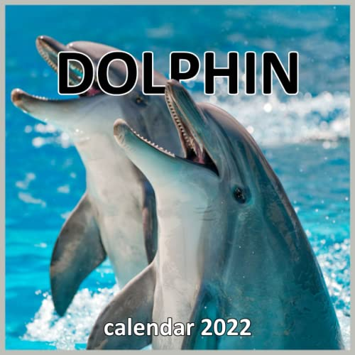 Dolphins Calendar 2022: Monthly Squ…