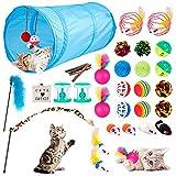 EXTSUD Juguetes para Gatos, 33 Piezas Juguetes Interactivos para Gatos, Túnel para Gatos, Hierba Gatera, Varita de Plumas, Peces, Ratones, Bolas y Campanas