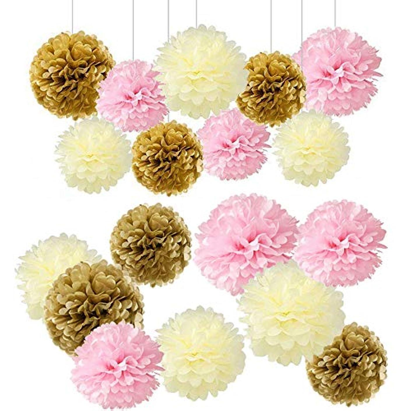 Tissue Paper Pom Pom Flowers Ball Party Decoration Kit for Birthday Wedding Celebration (Assorted 01)