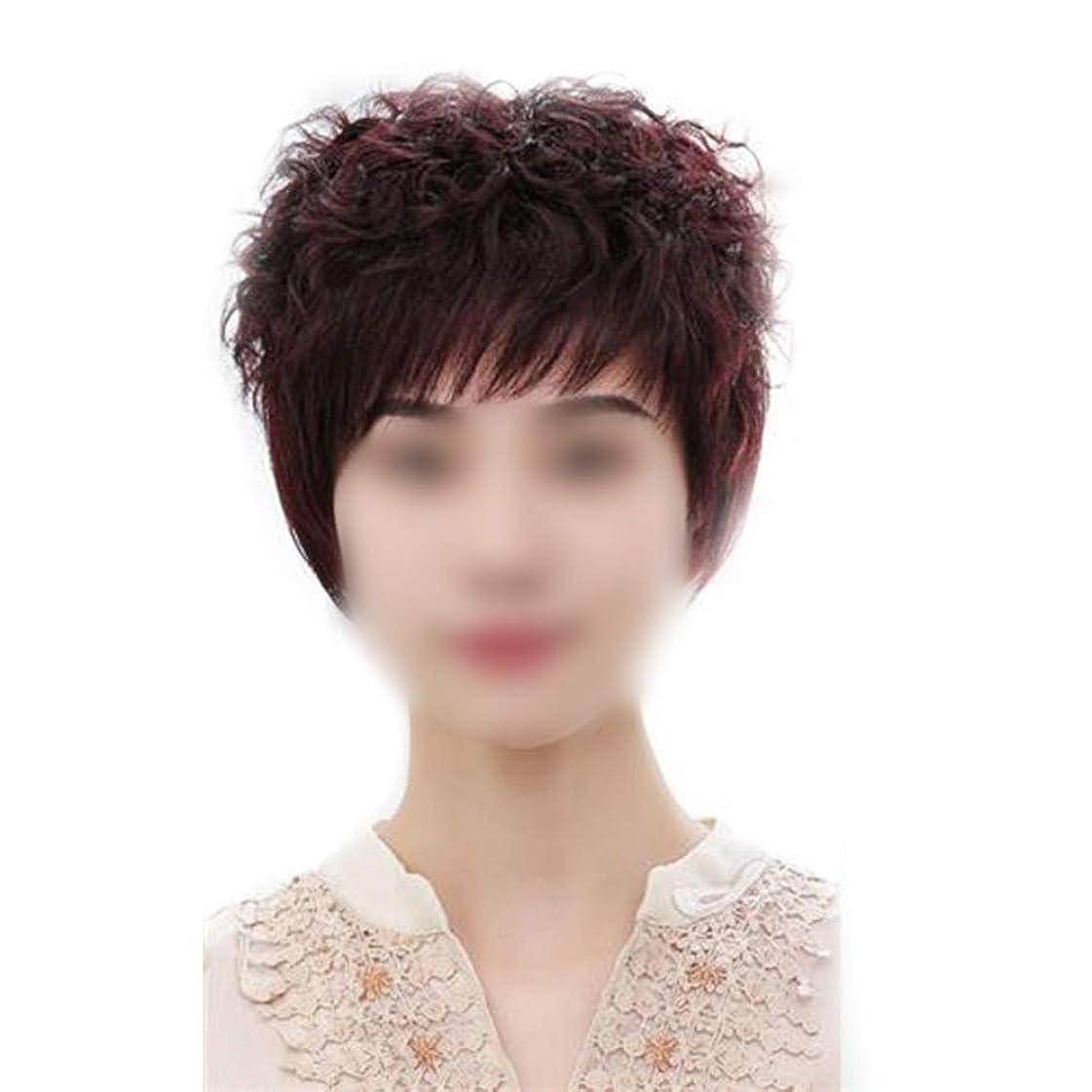 偶然褐色溶けるYrattary ナチュラルボブショートカーリーヘアーリアルヘア手織り中年かつらロールプレイングかつらキャップ (色 : Natural black)