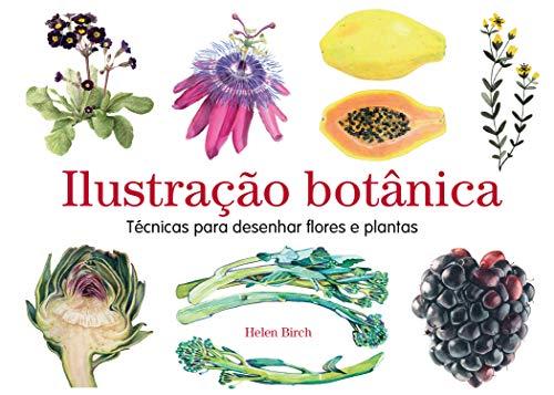 Ilustração botánica: Técnicas para desenhar flores e plantas