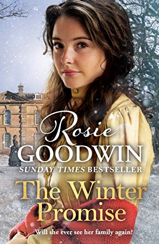 The Winter Promise: The perfect Christmas gift from the Sunday Times bestselling author by [Rosie Goodwin]
