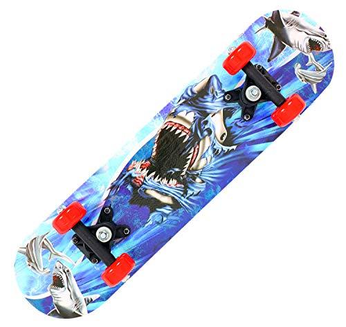 BIASTNR Kinder-Skateboard, komplettes Skateboard, 61 cm, 7 Schichten kanadischer Ahorn, Double Kick Konkave Standard und Tricks Skateboards für Kinder und Anfänger (B)