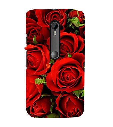 Fiobs Designer Back Case Cover for Motorola Moto G3 :: Motorola Moto G (3rd Gen) :: Motorola Moto G3 Dual SIM (Rose Flowers Floral Ful Red Gulaab Aroma Smell)