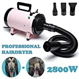 dicn Dog Hair Dryer Professional 2800W Low Noise with 3 Nozzles & Extendable