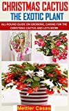 CHRISTMAS CACTUS THE EXOTIC PLANT: ALL-ROUND GUIDE ON GROWING, CARING FOR THE CHRISTMAS CACTUS AND LOTS MORE (English Edition)