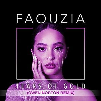 Tears of Gold (Owen Norton Remix)
