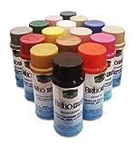 Moneysworth & Best Brillo Leather/Vinyl/Plastic Color Re Spray Dye/Paint 12 oz, Black