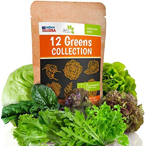 12 Lettuce and Greens Seed Pack Heirloom and Non GMO Grown in USA Indoor or Outdoor Garden Iceberg product image