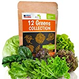 12 Lettuce and Greens Seed Pack - Heirloom and Non GMO, Grown in USA - Indoor or Outdoor Garden -...
