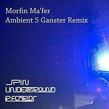 Ambient 5 (Ganster Remix)