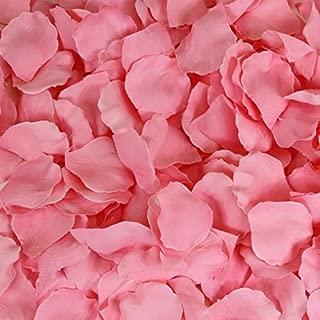 fresh rose petal confetti