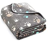 Super Soft and Premium Fuzzy Flannel Fleece Pet Dog Blanket, The Cute Print Design Washable Fluffy Blanket for Puppy Cat Kitten Indoor or Outdoor, Grey, 31 x 24 Inches