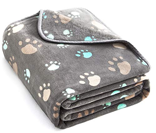 Allisandro 350 GSM-Super Soft and Premium Fuzzy Flannel Fleece Pet Dog Blanket, The Cute Print Design Washable Fluffy Blanket for Puppy Cat Kitten Indoor or Outdoor, Grey, 39 x 31