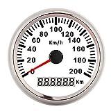 Tachimetro GPS, 200 km/h Tachimetro GPS da 3,3 pollici Tachimetro digitale impermeabile 12V/24V per yacht da moto(Cornice d'argento su bianco)