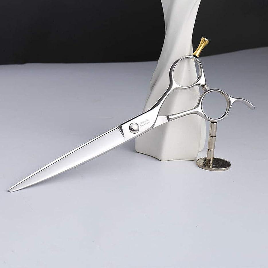 反響する信者キロメートル7.0インチの上限ペット手入れをするはさみ、ステンレス鋼ペット手入れをすること ヘアケア (色 : Silver)