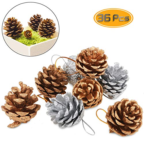 Yexpress 36 Pack Christmas Pine Cones, Natural Pinecones Frosted Gold and Snow Pine Cones for Christmas Tree Party(1.11' - 1.57')