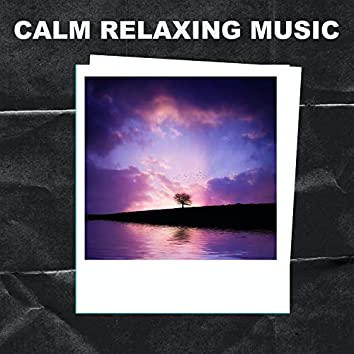 Calm Relaxation Music