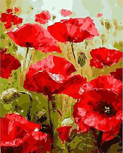 WOWDECOR DIY Malen nach Zahlen für Erwachsene Kinder Mädchen, Rot Mohn Blume 40x50cm Vorgedruckt Leinwand-Ölgemälde (mit Rahmen)