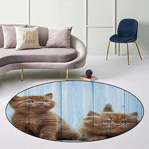 """Animal Decor Skid-Resistant Round Floor Mat, Baby Kitten Siblings Lovely Animals Creatures Best Friend Artwork Print Safe for All Surfaces Home Playroom, Diameter 43"""" Caramel Sky Blue"""