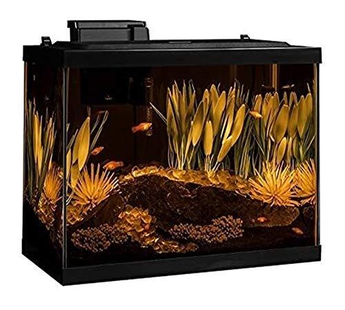 MAXIAOQIN Komplett Aquarium Kit W/Filter Heater LED & Pflanzen (Color : 20 Gallon Aquarium Kit)
