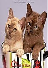 Chat Carnet de Notes: Carnet de Notes A4 Chat Mignon,  8,27 x 11,69 pouces (21 x 29,7 cm)120 Pages lignées, pour écriture, un jolie et simple, avec couverture souple, Adorable chaton (French Edition)