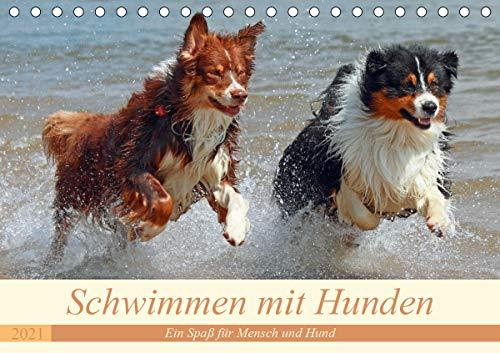 Schwimmen mit Hunden - Ein Spaß für Mensch und Hund (Tischkalender 2021 DIN A5 quer)