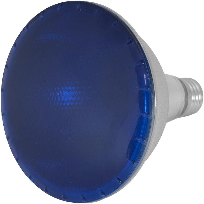 Showking Set aus 5 x LED Lampen PAR-38 230V   15W, Sockel E-27, blau - LED Leuchtmittel LED PAR